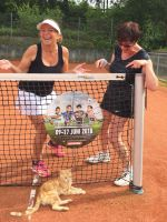 Die_Tenniskatze